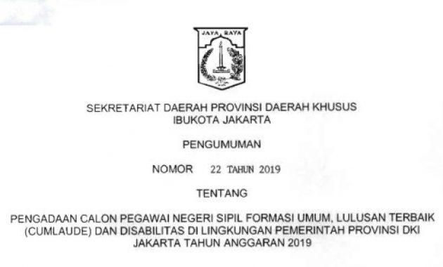 Pengumuman Rekrutmen CPNS Pemprov DKI Jakarta 2019 [3.958 Formasi]