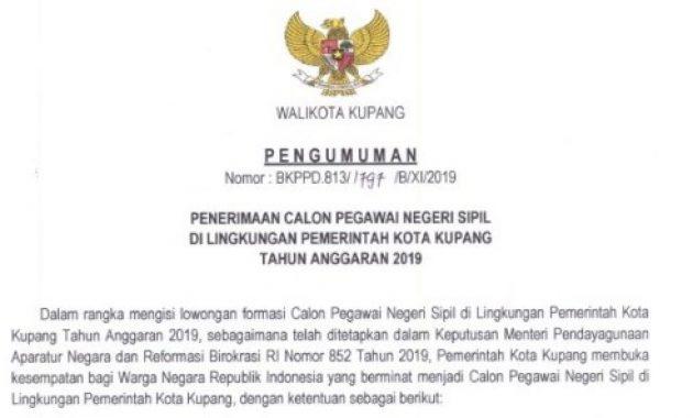 Pengumuman Penerimaan CPNS Kota Kupang 2019 [246 Formasi]