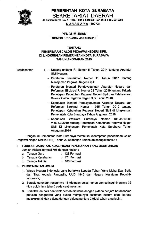 Rekrutmen Cpns Pemko Surabaya Tahun Anggaran 2019 705 Formasi