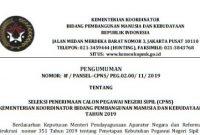 Lowongan CPNS Kemenko PMK Tahun Anggaran 2019 [77 Formasi]
