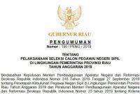 Lowongan CPNS Pemprov Riau Tahun 2019 [271 Formasi]