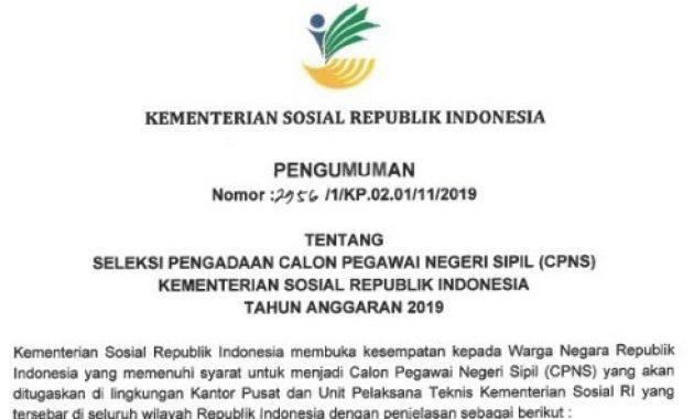 Pengumuman Lowongan CPNS Kementerian Sosial 2019 [117 Formasi]