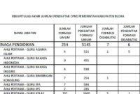 Rekapitulasi Jumlah Pelamar CPNS 2019 di Kabupaten Blora