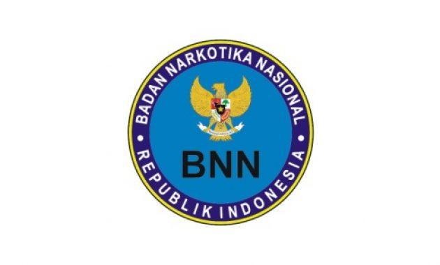 Rekrutmen Pegawai Kontrak Badan Narkotika Nasional Desember 2020