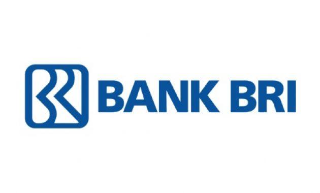 Rekrutmen MDM Developer PT Bank Rakyat Indonesia (Persero) Tbk Februari 2021
