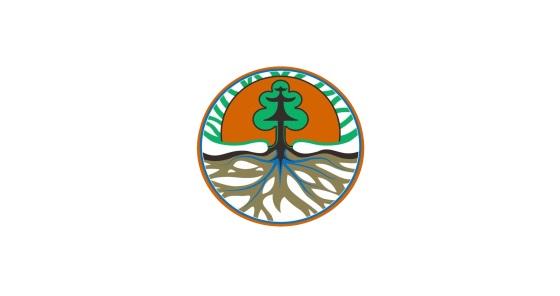 Lowongan Kerja Non PNS Dinas Lingkungan Hidup Tingkat SLTP SLTA SMK dan S1 Tahun 2020