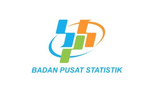 Rekrutmen PPNPN Badan Pusat Statistik Minimal D3/S1 Tahun 2021