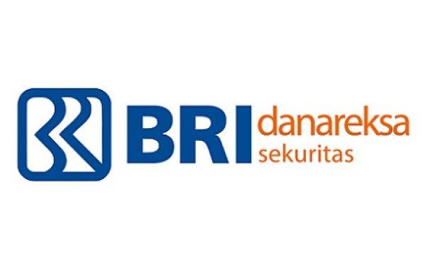 Lowongan Kerja PT BRI Danareksa Sekuritas (BUMN Group) Tahun 2021