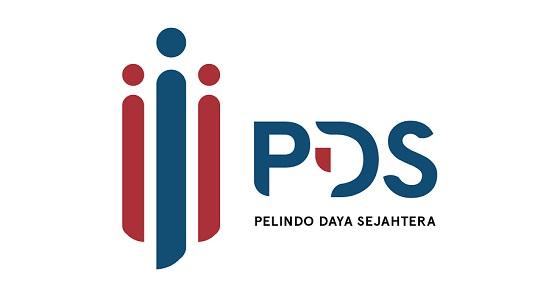 Lowongan Kerja Staf & Surveyor PT Pelindo Daya Sejahtera Mei 2021