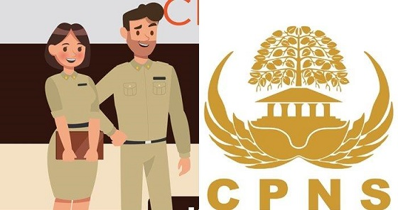 Daftar Daerah yang Buka Lowongan CPNS & PPPK Tahun 2021